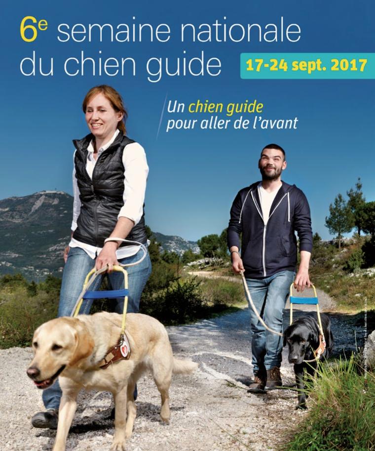 17-24 septembre : 6e semaine nationale du chien guide